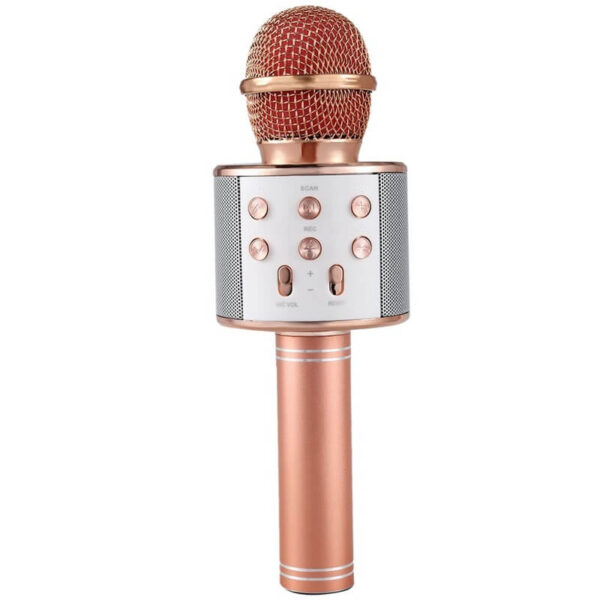 میکروفون KTV WS-858 رزگلد