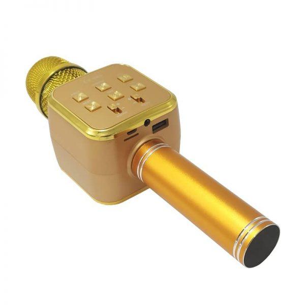 اسپیکر میکروفون مدل LY-889 رم و فلش خور